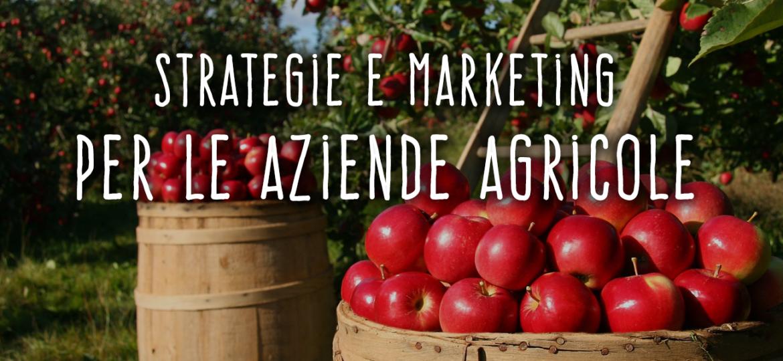 web-marketing-per-aziende-agricole